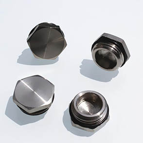 Stainless Steel Blanking Plug/Blanking Gland